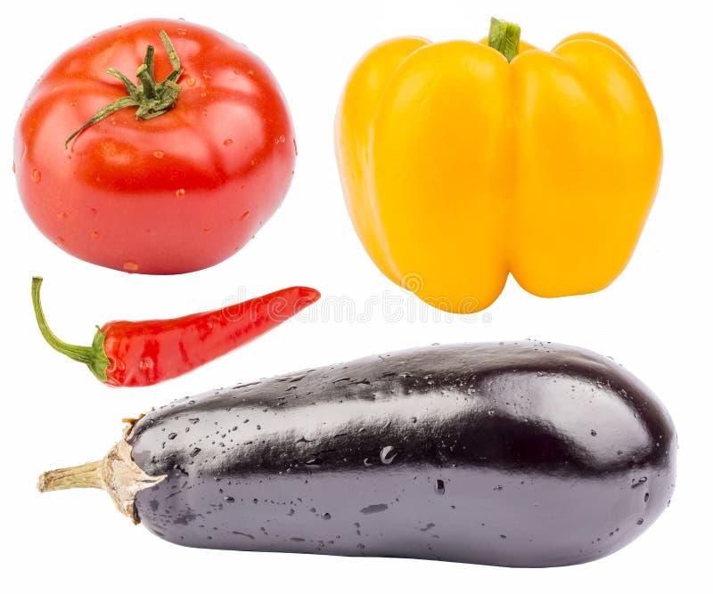 λευκό φρέσκων λαχανικών α& στοκ εικόνα