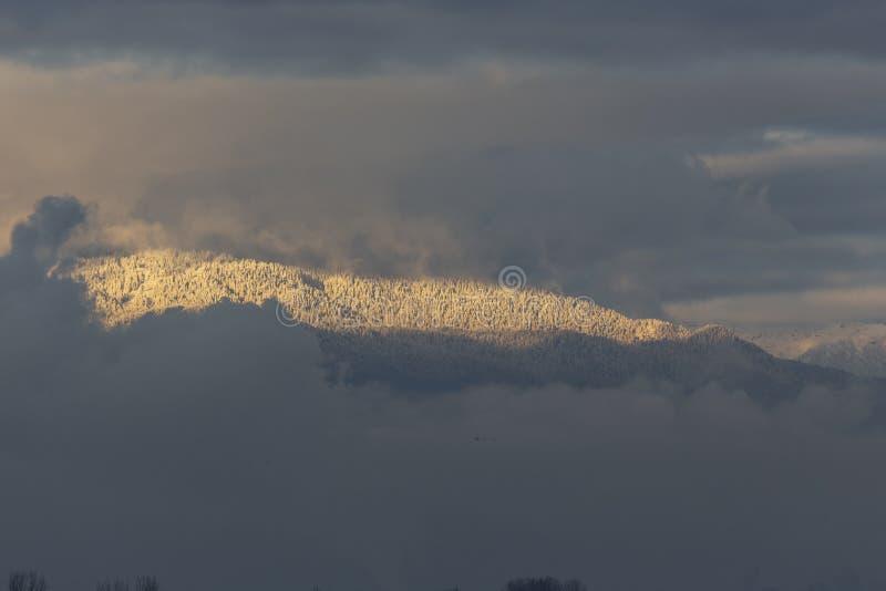 Λευκό χιόνι καλυμμένο από βουνό στοκ εικόνες