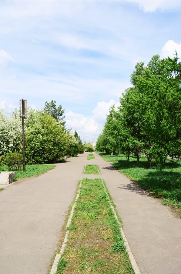 Λεωφόρος άνοιξη στην πόλη, Ομσκ, Ρωσία στοκ φωτογραφία με δικαίωμα ελεύθερης χρήσης