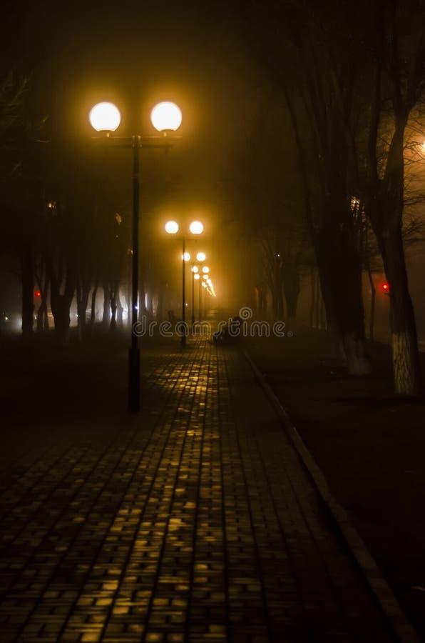 Λεωφόρος στην ομίχλη νύχτας στοκ εικόνες με δικαίωμα ελεύθερης χρήσης