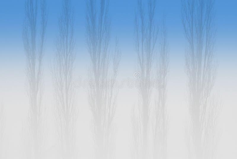 λεύκες ομίχλης στοκ φωτογραφίες