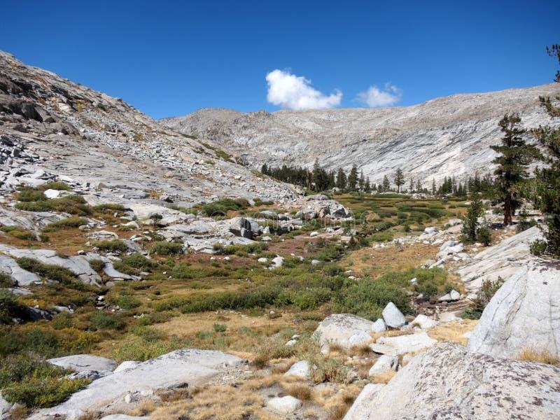 Λιβάδι βουνών, Καλιφόρνια στοκ φωτογραφίες με δικαίωμα ελεύθερης χρήσης