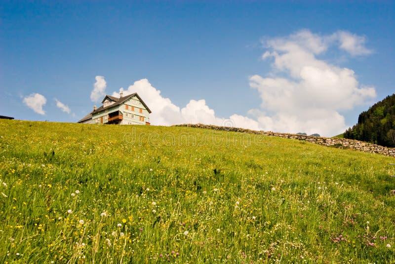 λιβάδι Ελβετός στοκ φωτογραφία με δικαίωμα ελεύθερης χρήσης