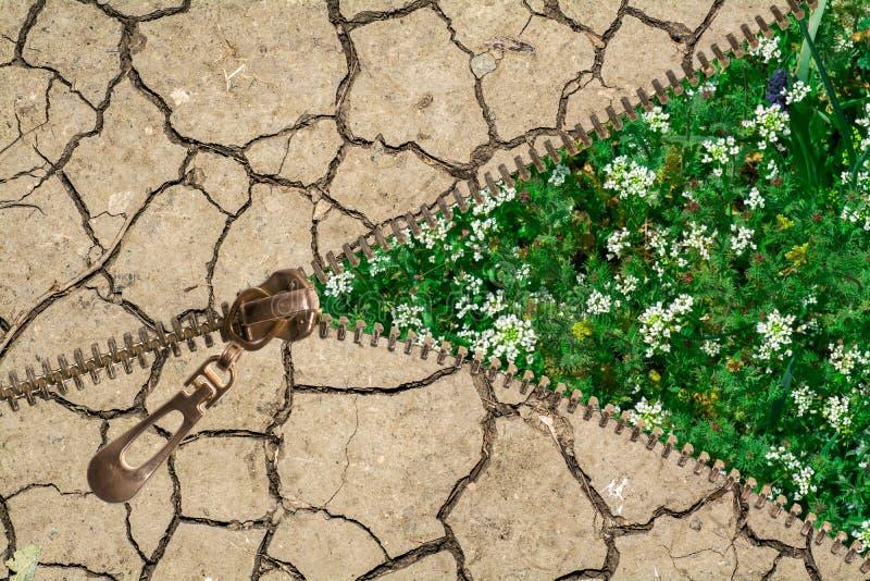 Λιβάδι και ραγισμένο χώμα απεικόνιση αποθεμάτων
