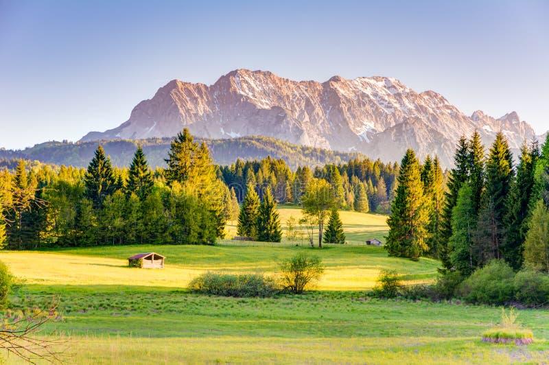 Λιβάδι στα βουνά Karwendel στοκ εικόνες