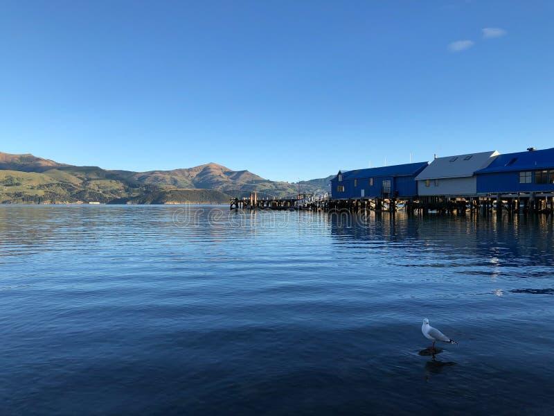 Λιμενοβραχίονας και λίμνη στην πόλη Akaroa, Νέα Ζηλανδία στοκ φωτογραφίες με δικαίωμα ελεύθερης χρήσης
