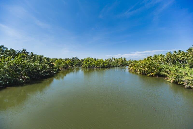 Λιμνοθάλασσα σε Negombo, Σρι Λάνκα στοκ εικόνα με δικαίωμα ελεύθερης χρήσης
