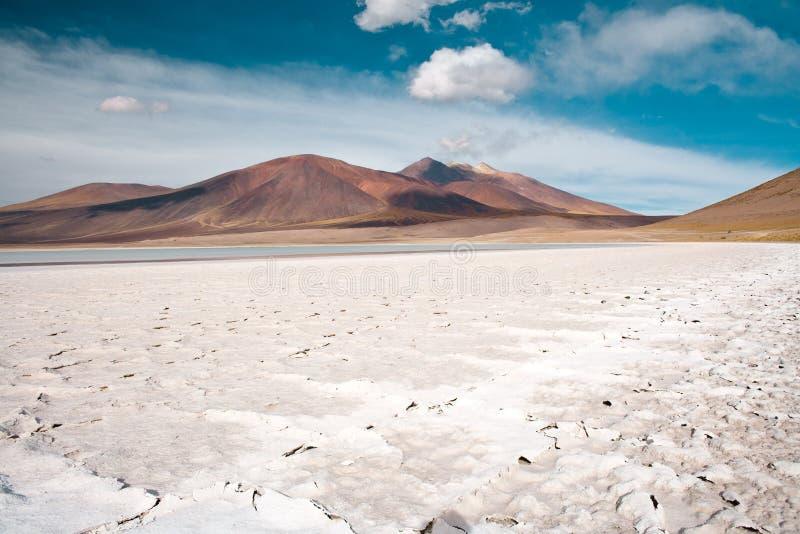 Λιμνοθάλασσα Tuyajto και αλατισμένη λίμνη στο Altiplano της Χιλής στοκ εικόνα με δικαίωμα ελεύθερης χρήσης