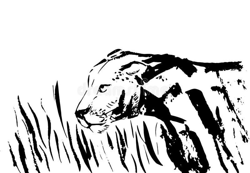 Λιοντάρι στο σχέδιο χεριών φύσης που απομονώνεται τα άσπρα υπόβαθρα διανυσματική απεικόνιση