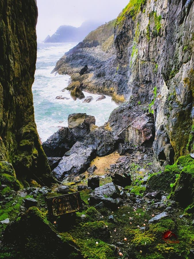 Λιοντάρι Hideaway θάλασσας στοκ φωτογραφίες με δικαίωμα ελεύθερης χρήσης