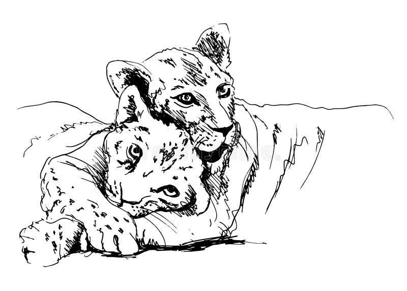 Λιονταρίνα με cub διανυσματική απεικόνιση