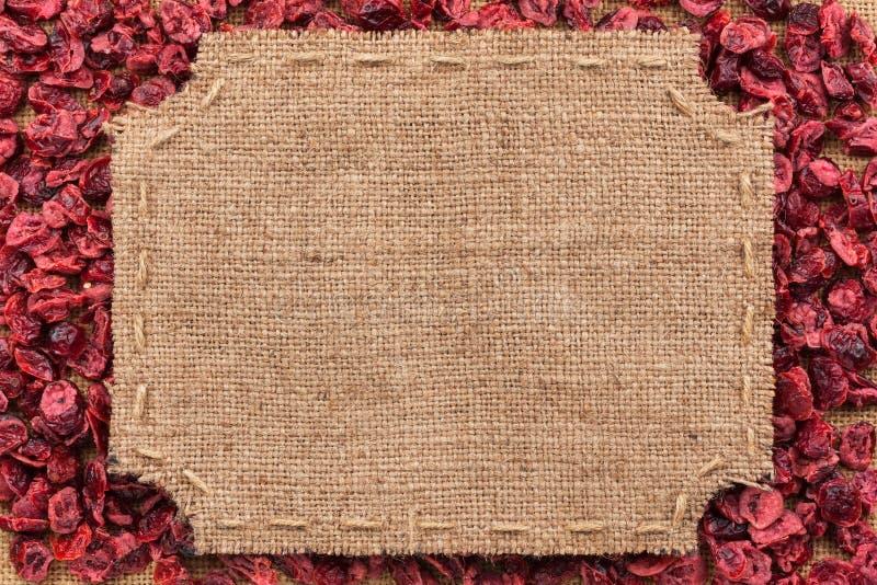 Λογαριασμένο πλαίσιο φιαγμένο από burlap στο ξηρό το βακκίνιο στοκ φωτογραφία με δικαίωμα ελεύθερης χρήσης