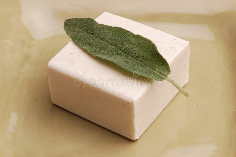 λογικό σαπούνι στοκ φωτογραφία με δικαίωμα ελεύθερης χρήσης