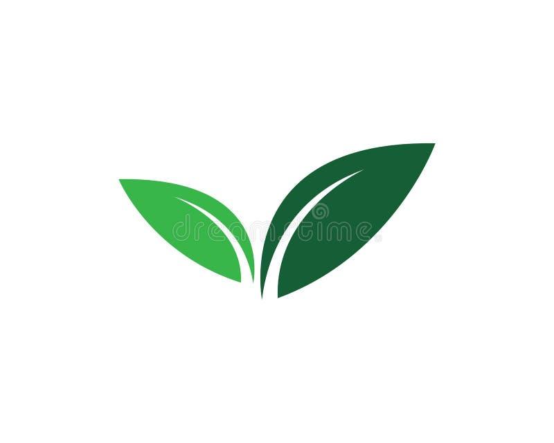 Λογότυπα της πράσινης οικολογίας φύλλων δέντρων διανυσματική απεικόνιση
