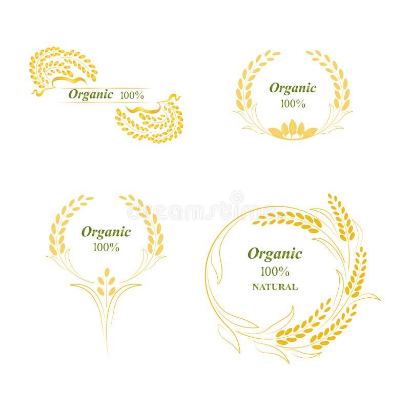 Λογότυπο ρυζιού απεικόνιση αποθεμάτων