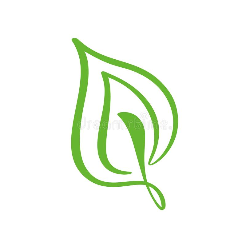 Λογότυπο του πράσινου φύλλου του τσαγιού Διανυσματικό εικονίδιο στοιχείων φύσης οικολογίας floral Συρμένη χέρι απεικόνιση καλλιγρ ελεύθερη απεικόνιση δικαιώματος