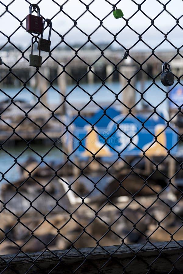 Λουκέτα εραστών στην αποβάθρα 39 στοκ φωτογραφία με δικαίωμα ελεύθερης χρήσης