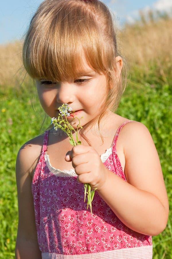 λουλούδια αλλεργιών στοκ φωτογραφία