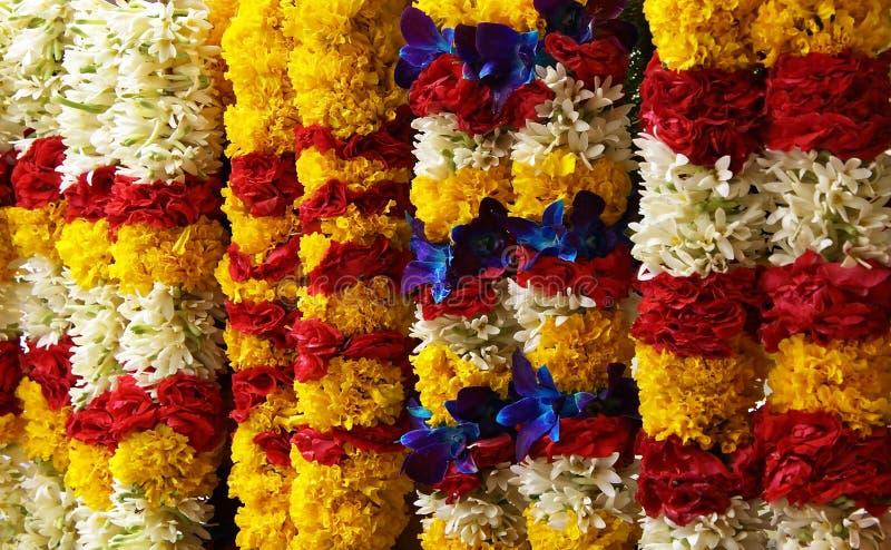 λουλούδια Ινδία λίγα στοκ εικόνα με δικαίωμα ελεύθερης χρήσης