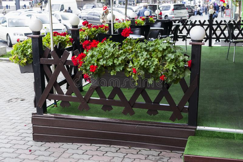 Λουλούδια και εγκαταστάσεις flowerpots και σκάφες στο σχέδιο στοκ φωτογραφίες με δικαίωμα ελεύθερης χρήσης