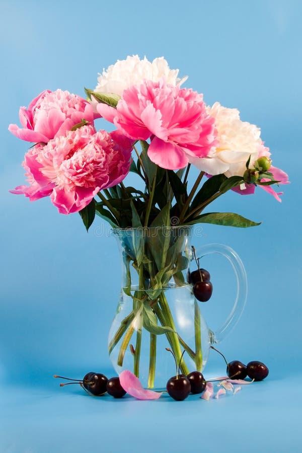 λουλούδια κερασιών ανθοδεσμών στοκ φωτογραφίες