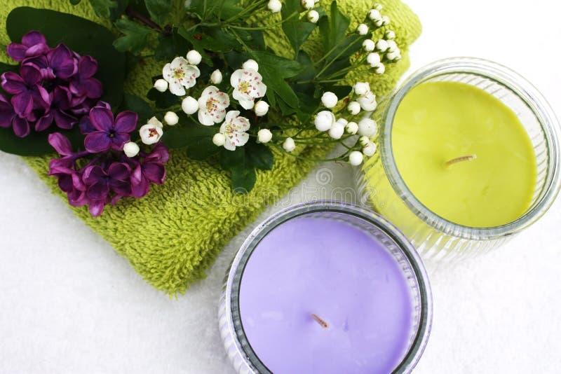 λουλούδια κεριών στοκ εικόνες
