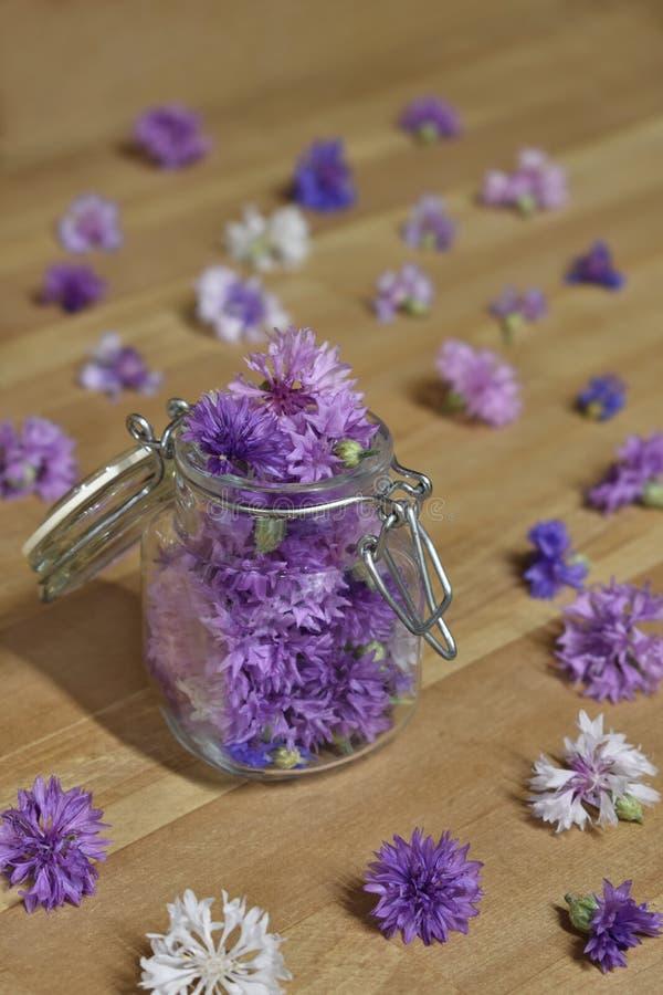 Λουλούδια κουμπιών αγάμου σε ένα κονσερβοποιώντας βάζο στοκ φωτογραφίες