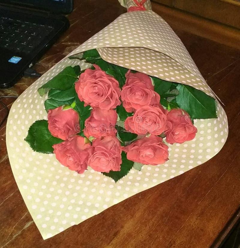 Λουλούδια, κόκκινα τριαντάφυλλα στοκ φωτογραφία με δικαίωμα ελεύθερης χρήσης