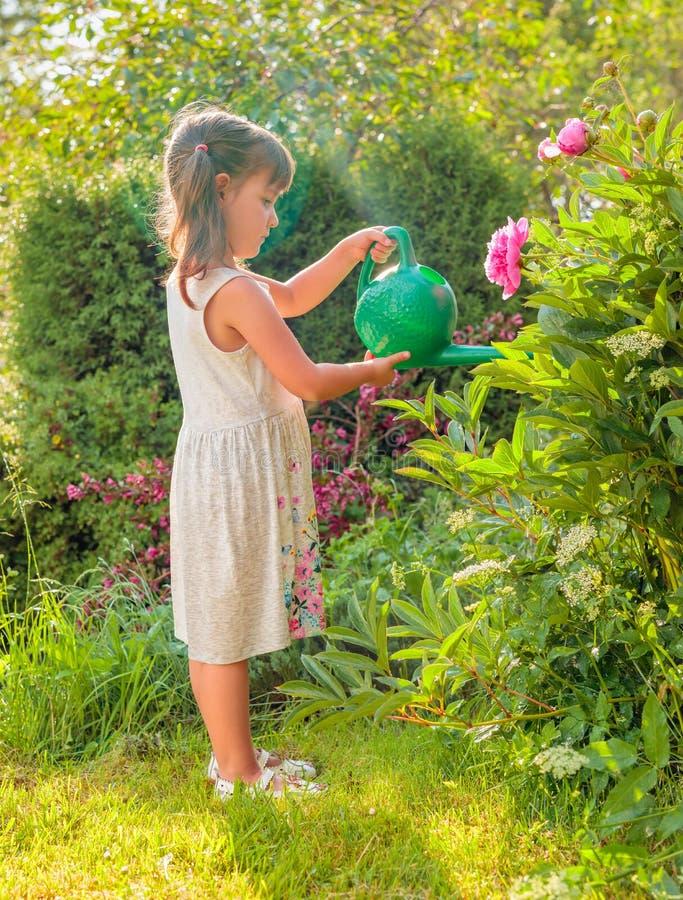 Λουλούδια ποτίσματος μικρών κοριτσιών στον κήπο στοκ εικόνες με δικαίωμα ελεύθερης χρήσης