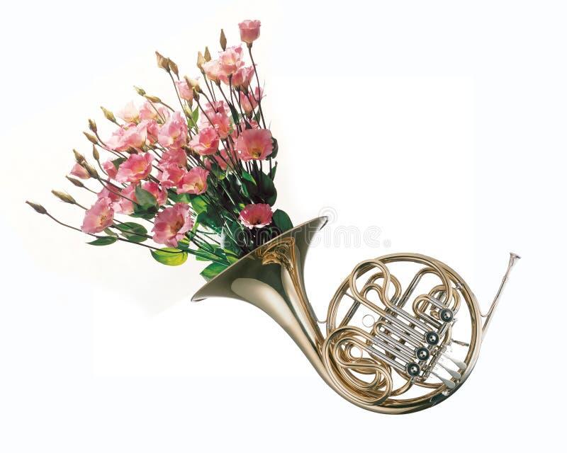 Λουλούδια που αυξάνονται από το γαλλικό κέρατο στοκ φωτογραφία με δικαίωμα ελεύθερης χρήσης