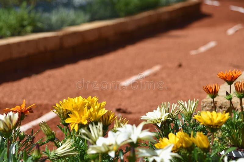 Λουλούδια στο δρόμο - Γένοβα Nervi - Euroflora - Ιταλία στοκ εικόνα με δικαίωμα ελεύθερης χρήσης