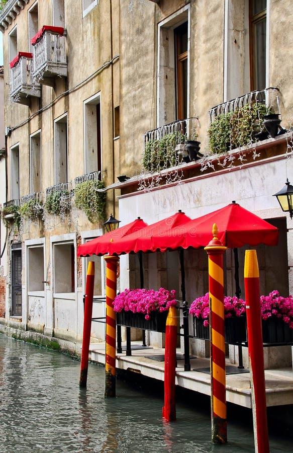 Λουλούδια της Βενετίας στοκ εικόνες