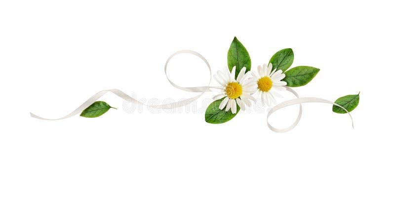 Λουλούδια της Daisy και κορδέλλα μεταξιού σε μια floral ρύθμιση γραμμών στοκ εικόνες