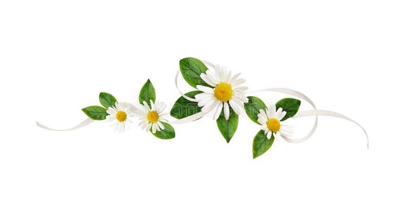 Λουλούδια της Daisy και κορδέλλα μεταξιού σε μια floral ρύθμιση γραμμών στοκ εικόνα με δικαίωμα ελεύθερης χρήσης