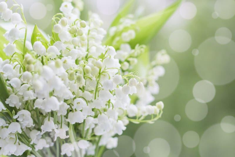 Λουλούδια του κρίνου της κοιλάδας σε ένα θολωμένο υπόβαθρο στοκ φωτογραφία