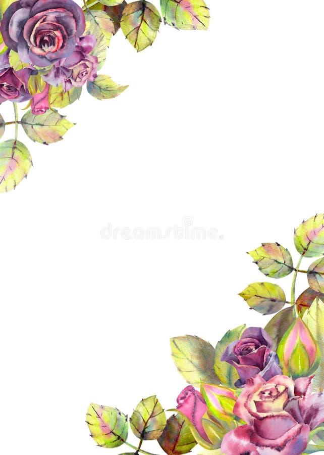 Λουλούδια των σκοτεινών τριαντάφυλλων, πράσινα φύλλα, σύνθεση Κάθετος προσανατολισμός του πλαισίου r E διανυσματική απεικόνιση