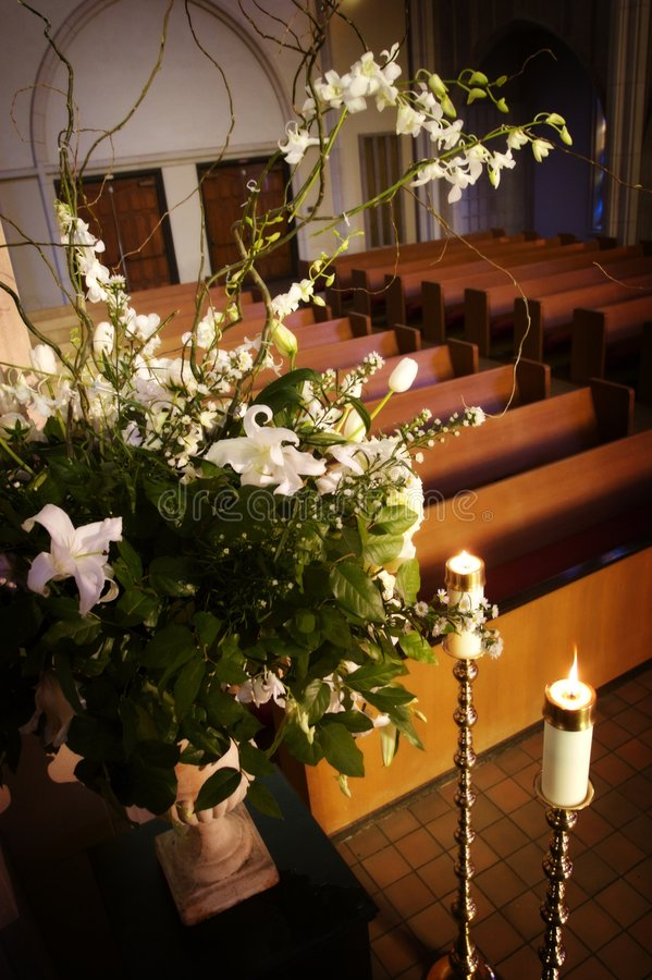 λουλούδια υψηλά στοκ φωτογραφίες
