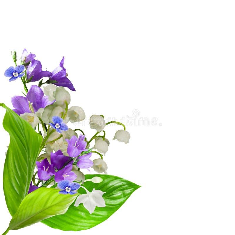 Download λουλούδια στοκ εικόνα. εικόνα από ανασκόπησης, φρέσκος - 13181601