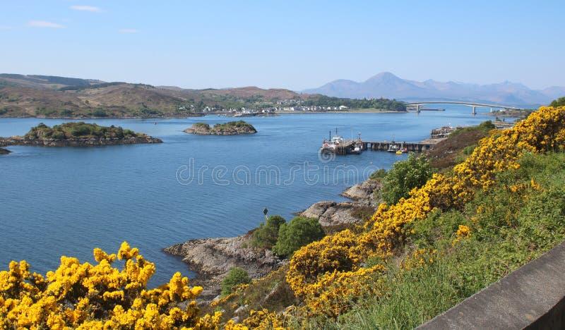 Λουλούδια Gorse, νησιά και οδική γέφυρα στοκ φωτογραφία με δικαίωμα ελεύθερης χρήσης