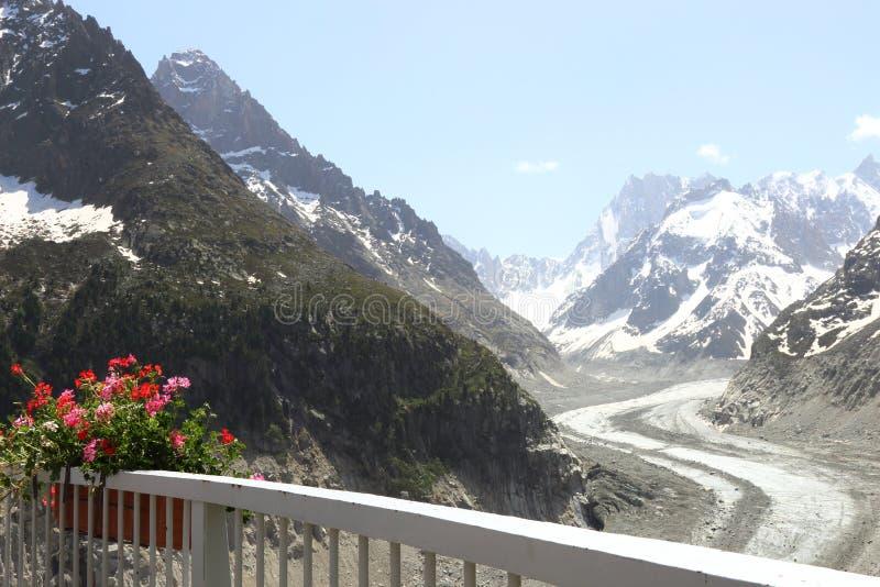 Λουλούδια Mer de Glace στον παγετώνα, Γαλλία στοκ φωτογραφία με δικαίωμα ελεύθερης χρήσης