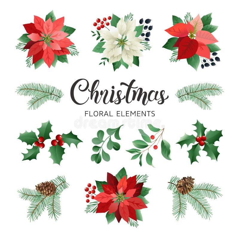 Λουλούδια Poinsettia και Floral στοιχεία Χριστουγέννων στο διάνυσμα ύφους Watercolor απεικόνιση αποθεμάτων