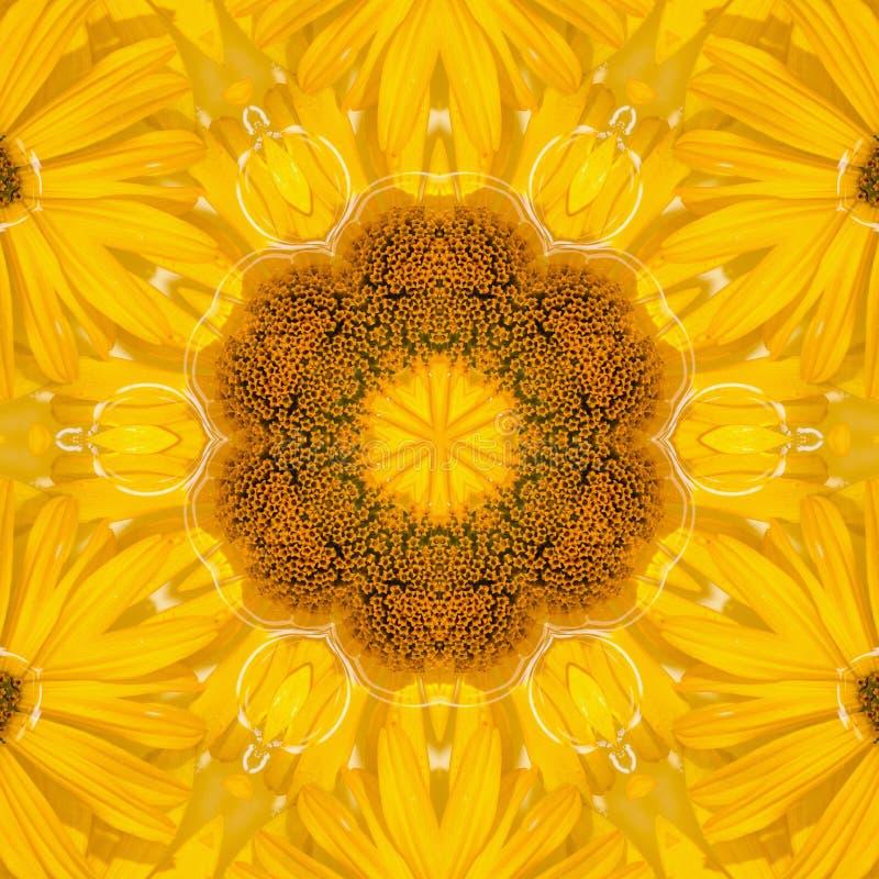 Λουλούδι ήλιων υποβάθρου σχεδίων ηλίανθων γραφικός διανυσματική απεικόνιση