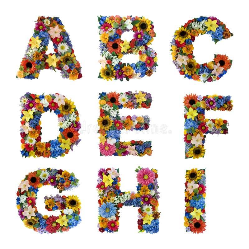 λουλούδι αλφάβητου στοκ φωτογραφία