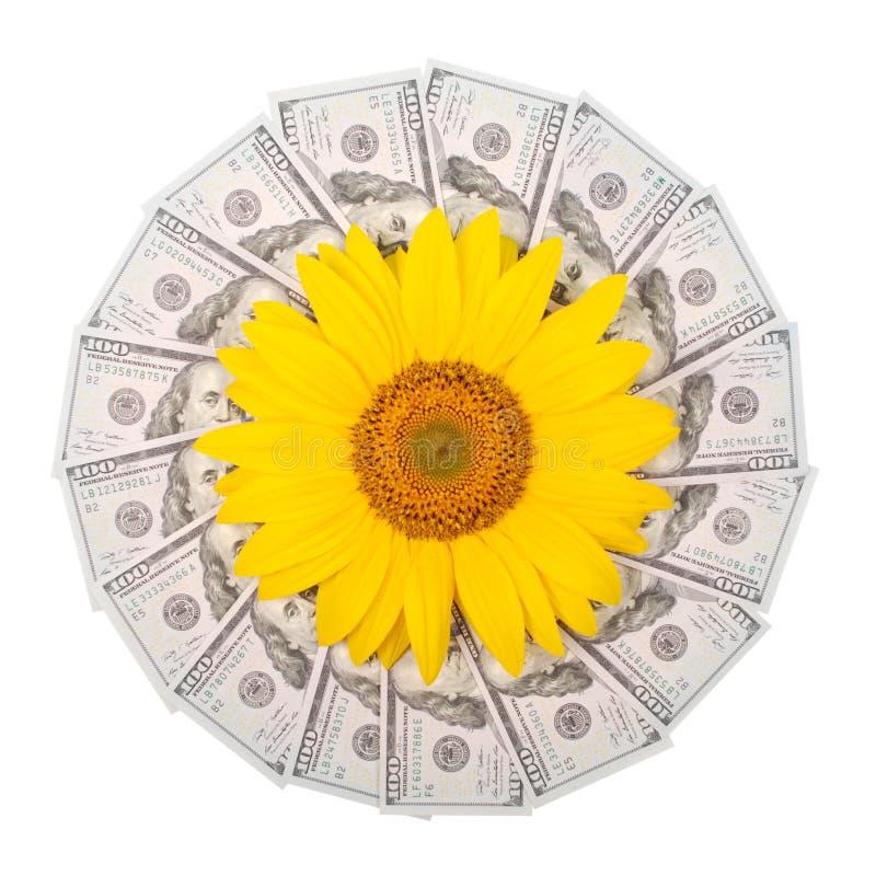 Λουλούδι ηλίανθων στο καλειδοσκόπιο mandala από τα χρήματα Το αφηρημένο σχέδιο ράστερ υποβάθρου χρημάτων επαναλαμβάνει τον κύκλο  στοκ εικόνα με δικαίωμα ελεύθερης χρήσης
