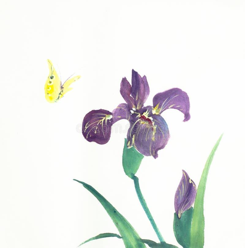 Λουλούδι και πεταλούδα της Iris απεικόνιση αποθεμάτων