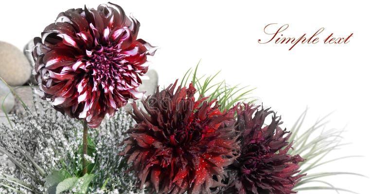 λουλούδι καρτών στοκ εικόνα με δικαίωμα ελεύθερης χρήσης