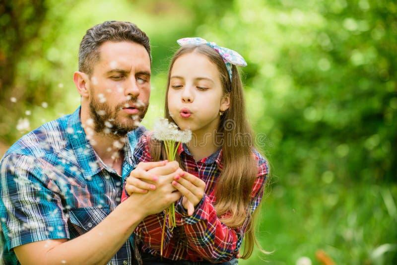 Λουλούδι πικραλίδων αγάπης κορών και πατέρων αγρόκτημα οικογενειακού καλοκαιριού του χωριού χώρα άνοιξη μικρό κορίτσι και ευτυχής στοκ εικόνες