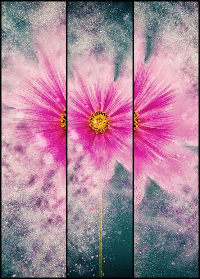 Λουλούδι - που εκρήγνυται στοκ εικόνες