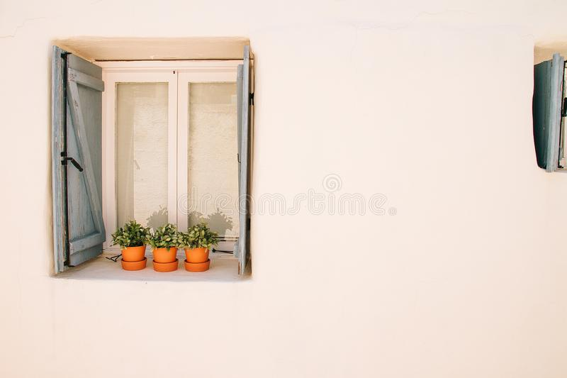 Λουλούδι στα δοχεία παράθυρα ενός στα ελληνικά ύφους στοκ φωτογραφία