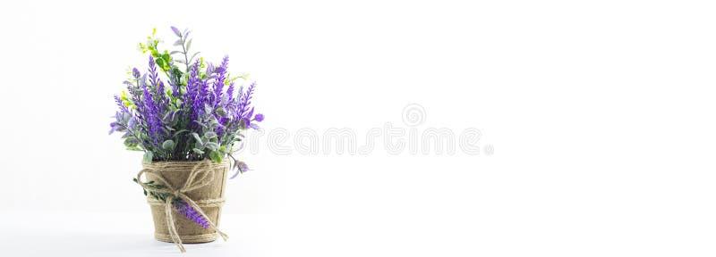 Λουλούδι στον πίνακα στοκ φωτογραφία
